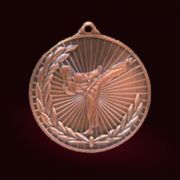 Медал Бойни изкуства