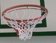 Мрежа за баскетбол, професионална